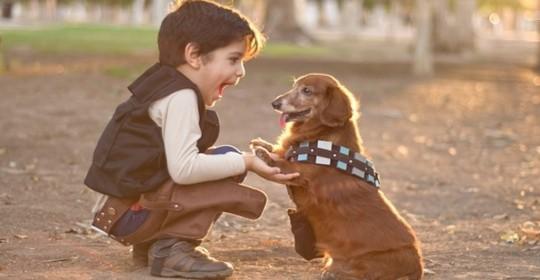 Παιδιά και κατοικίδια ζώα