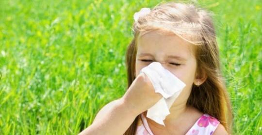 Αλλεργική Ρινίτιδα….Εποχιακή Νόσος